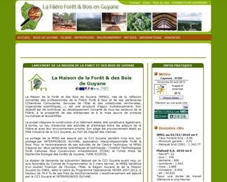 Référence création site public, collectivité : CCIG – La filière forêt et bois en Guyane